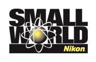 20 лучших макрофотографий конкурса Nikon Small World 2017