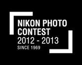 34-й конкурс Nikon Photo Contest. Начался прием работ.