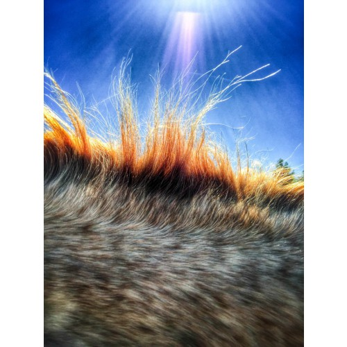 John Huet (США). 2-е место в категории Абстракция iPhone. Photography Awards 2015