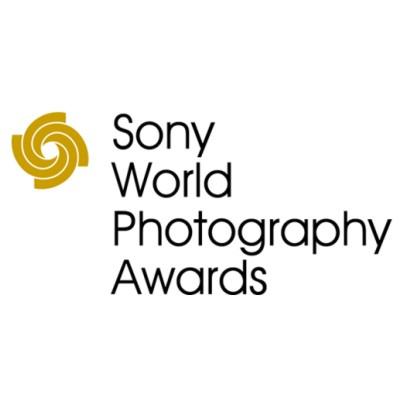 Определены победители Sony World Photography Awards'2014