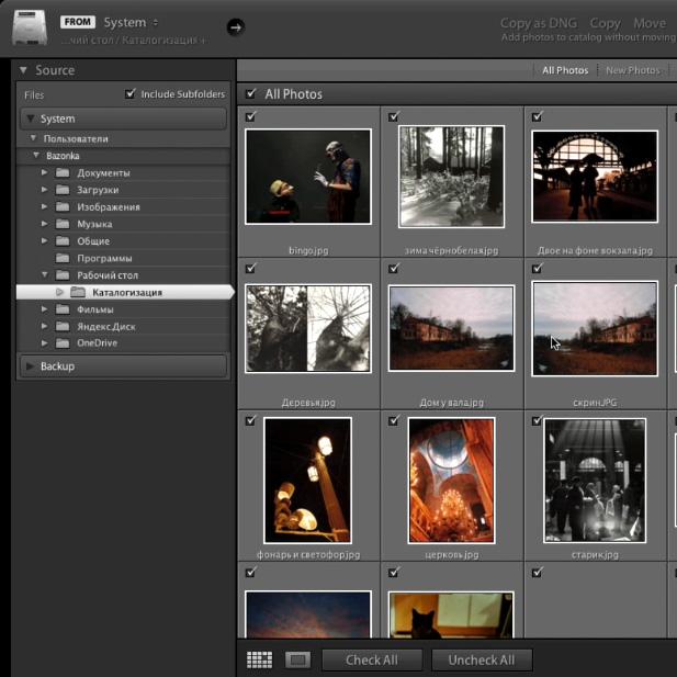 Каталогизация фотографий. Видеоурок