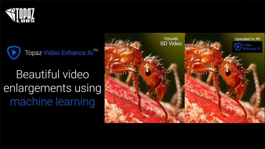 Topaz Video Enhance AI увеличит видео до 8K