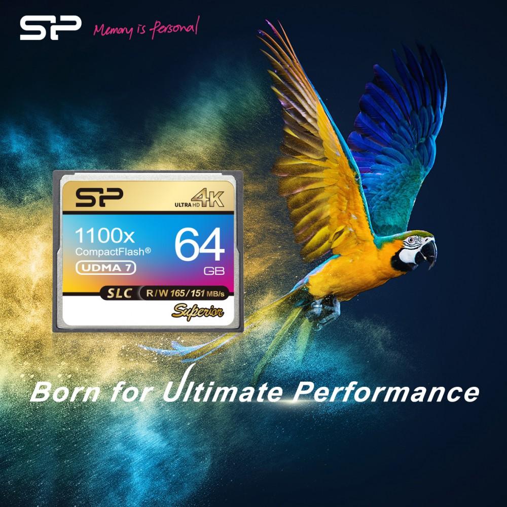 Silicon Power представил флагманскую карту Superior CF 1100X