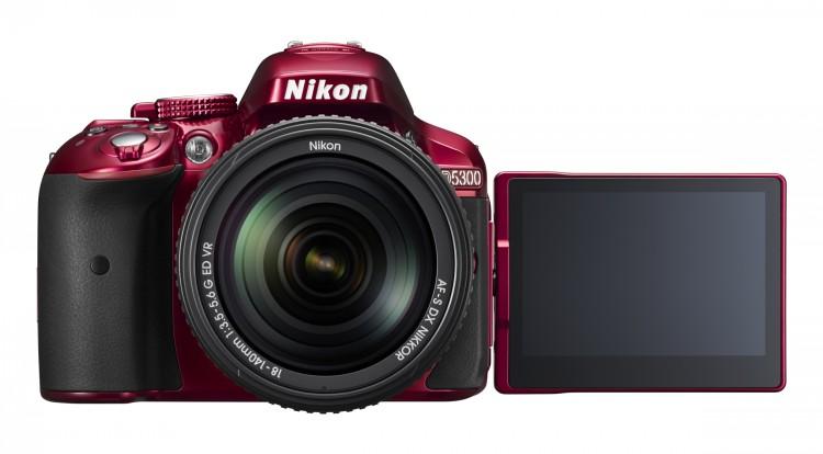 Тест-обзор Nikon D5300