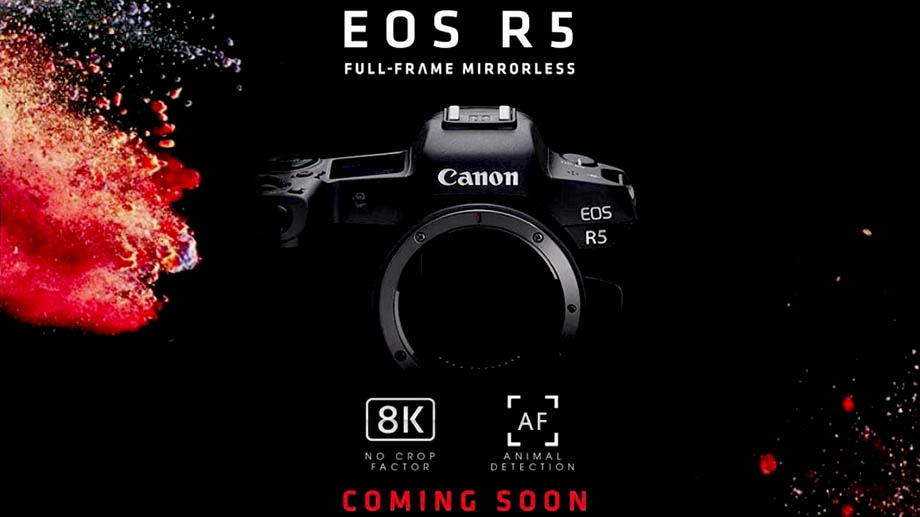 Canon EOS R5 получит 8K с поддержкой Dual Pixel AF