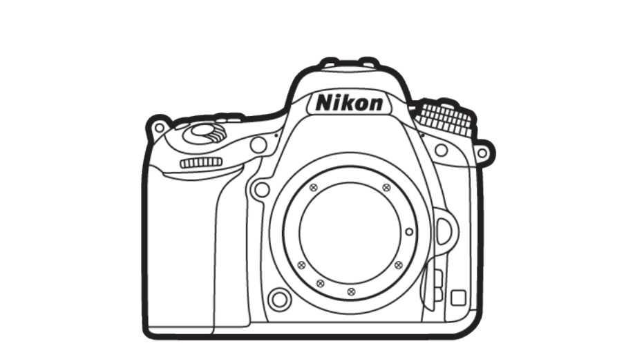 Nikon D770 или D780?