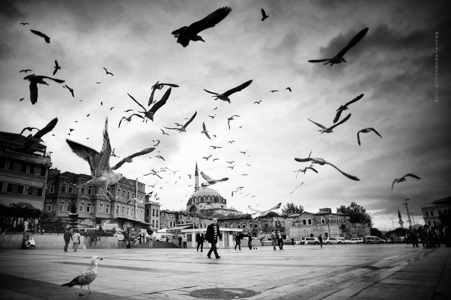 Мустафа Дедеоглу / Mustafa Dedeoglu (Турция) <СТАМБУЛ>