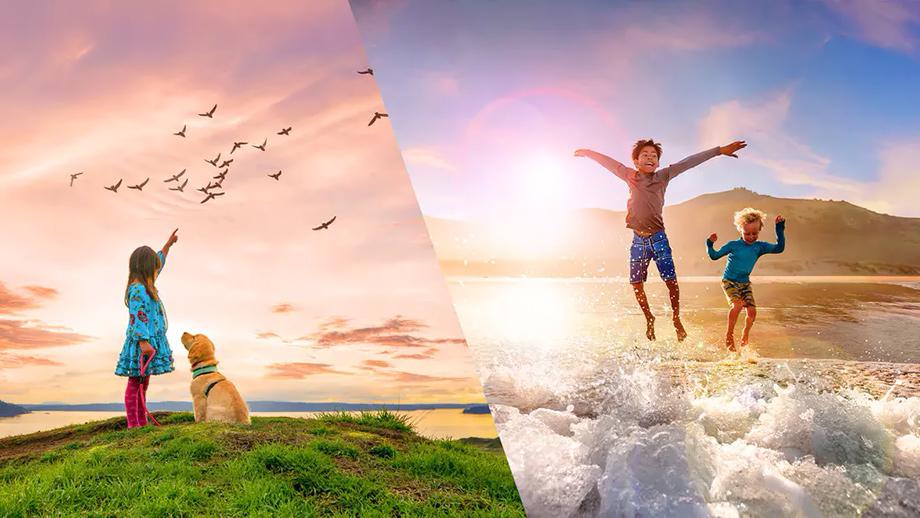 Adobe представила Photoshop Elements 2021 и Premiere Elements 2021