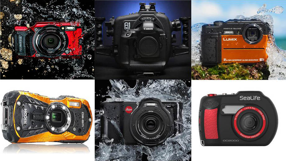 Немного позитива о будущем фотоиндустрии: продажи будут расти?